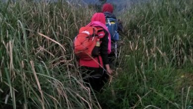 Photo of Pendakian Tektok Gunung Cikuray bersama Tektok Team