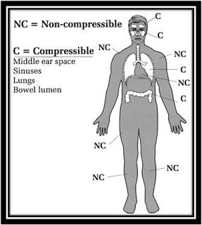 Efek dan Bahaya Perubahan Tekanan pada Tubuh 2
