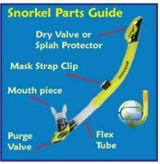 5 peralatan Snorkeling yang perlu diketahui saat skin dive 2