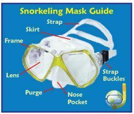 5 peralatan Snorkeling yang perlu diketahui saat skin dive-Celotehanputeno